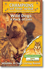 Wild Dogs & Wolves DVD